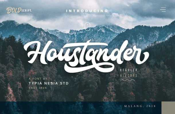 Houstander Script Font Free Download