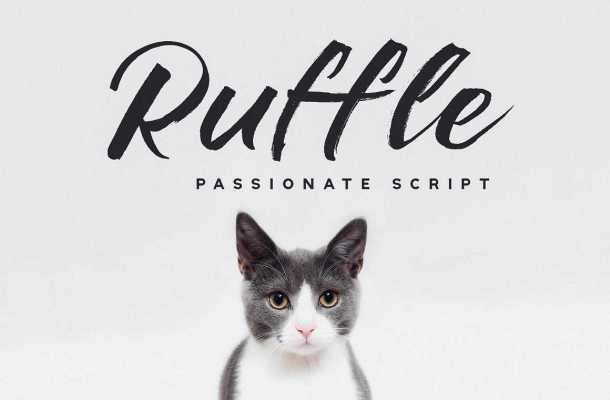 Ruffle Brush Font Free