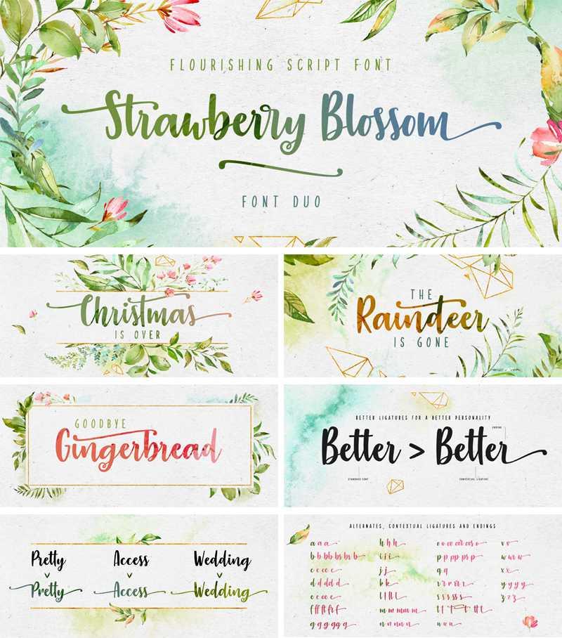 strawberry-blossom-font