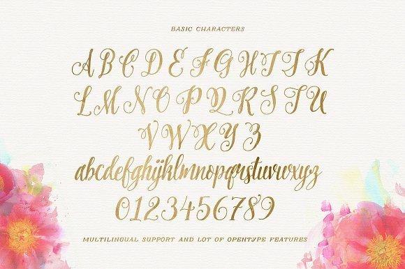 pretty-script-font-1.png