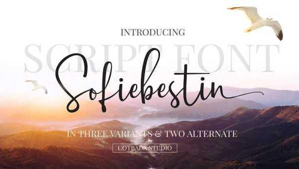 Sofiebestin Script Font Free Download