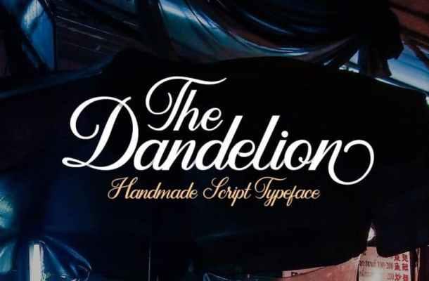 Dandelion Script Font Free Download
