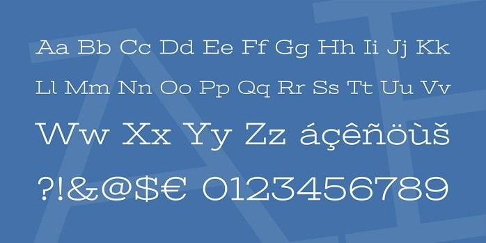 Stint Ultra Expanded Font-1