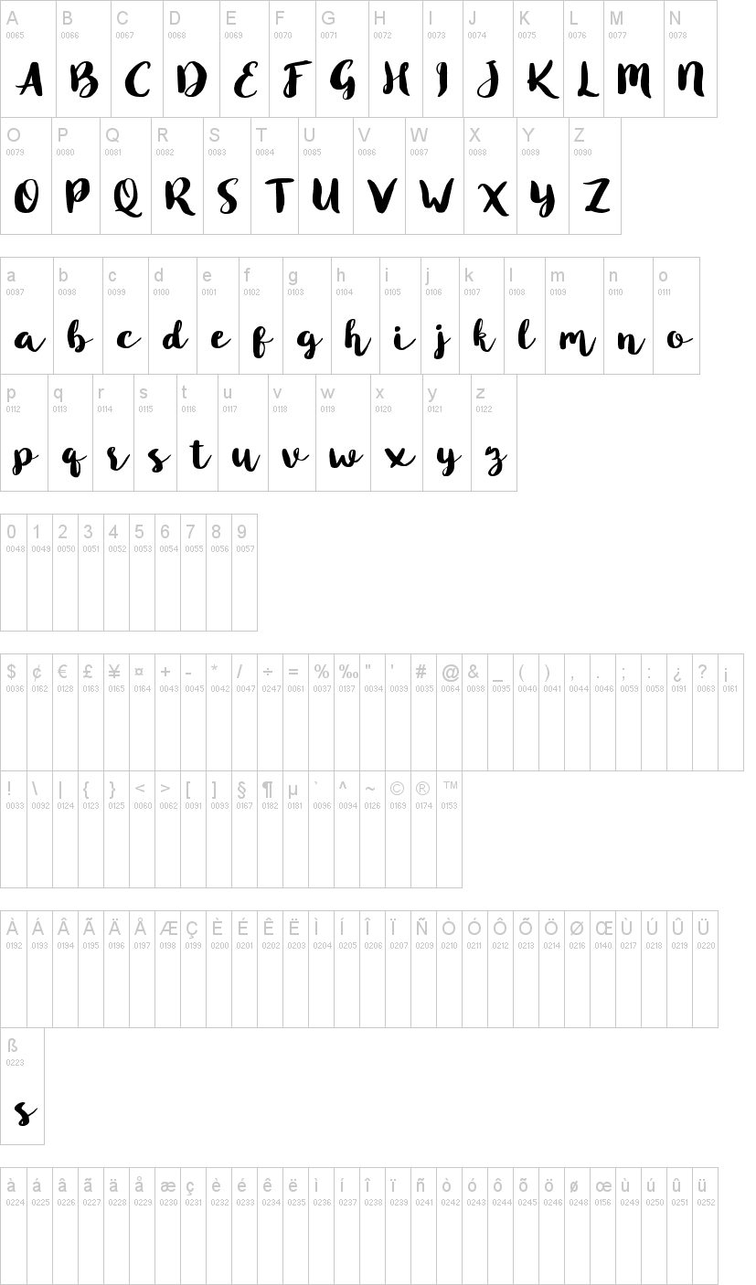 Blusty Script Font-1