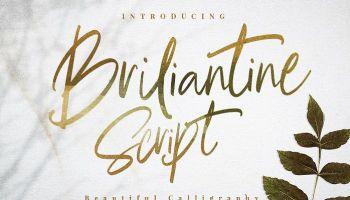 Elizabeth Script Font Free - Dafont Free