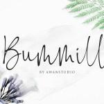 Bummill Signature Font