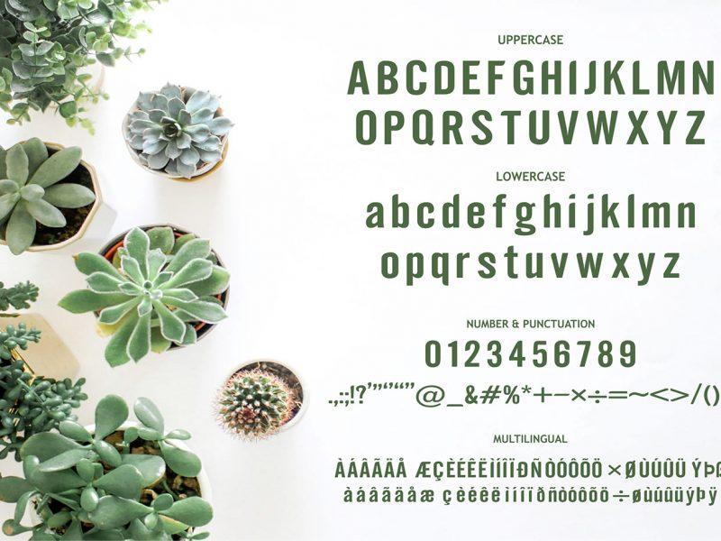 Estherilla Typeface-1