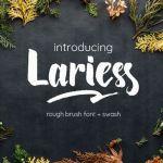 Lariess Brush Font