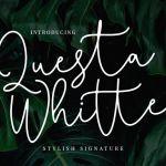Questa Whitte Signature Font