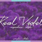 Real Violet Handwritten Font