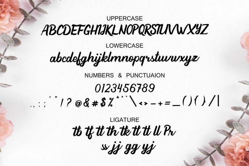 Beathy Handwritten Font-3