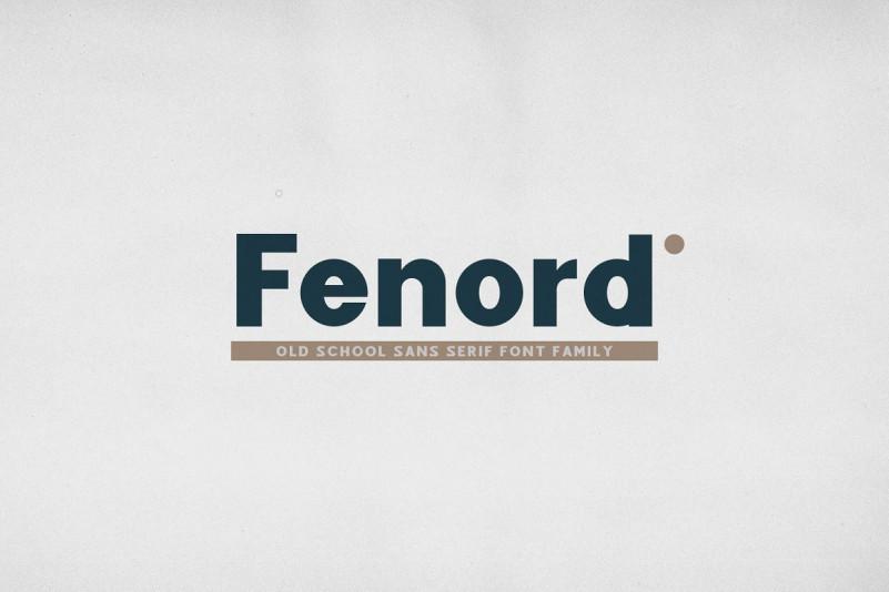 Fenord Sans Serif Font