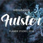 Fuister Script Font