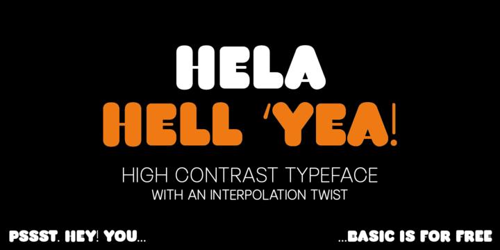 Hela Dysplay Font Family