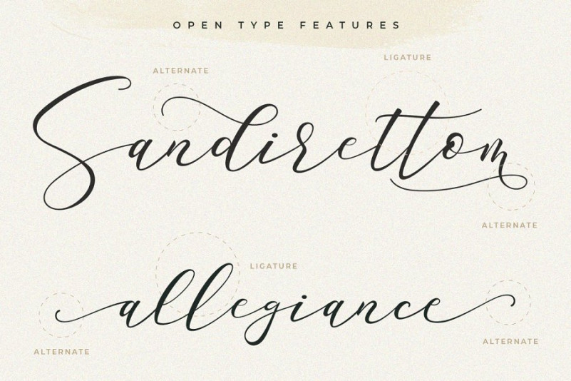 Sarodime Script Font-2