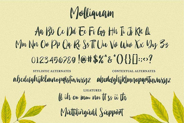 Molliquam Brush Font-3