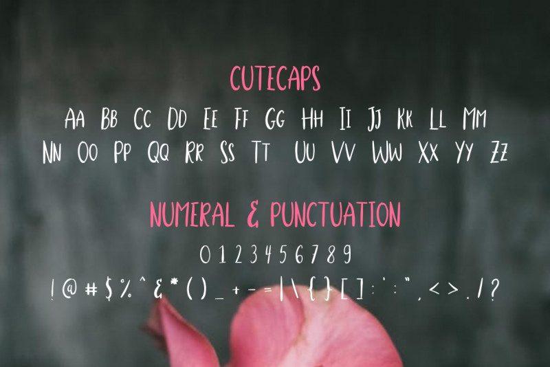 Stella Alpina Script Font-3