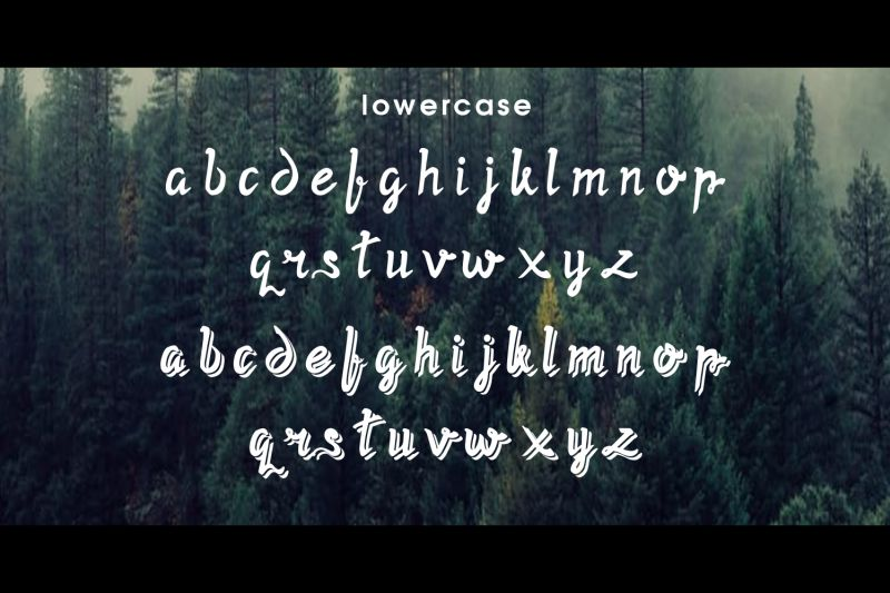 Twopath Script Font-3