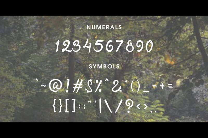 Twopath Script Font-4