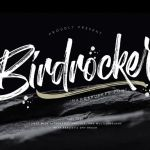 Birdrockers Brush Font