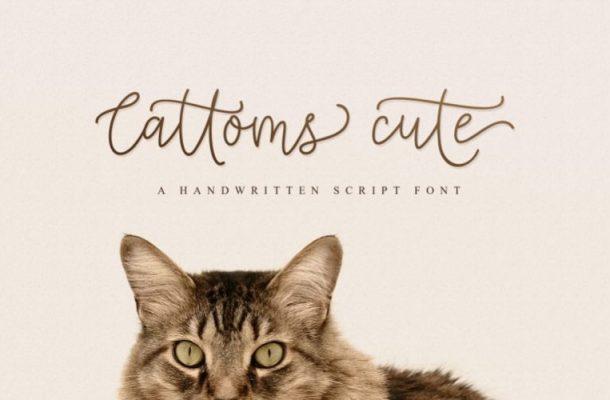 Cattoms Handwritten Font