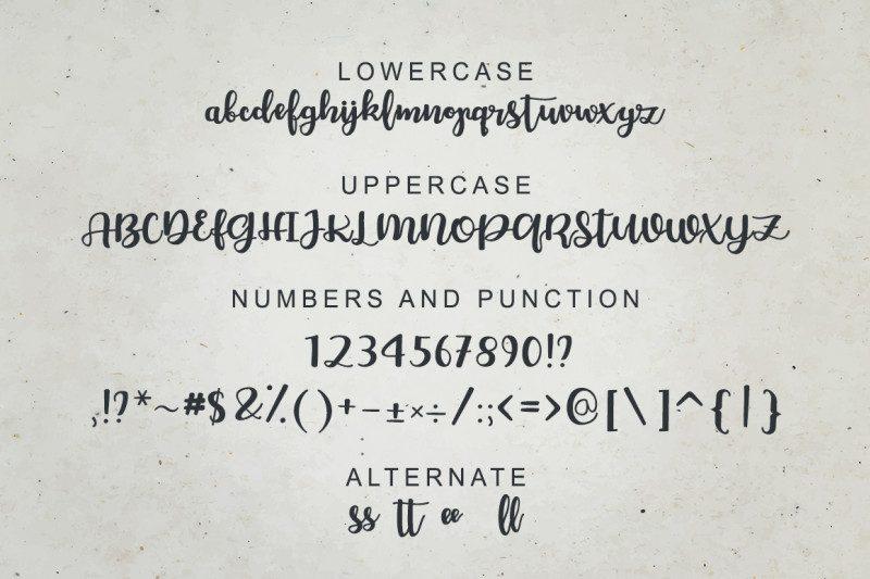 Chellion Script Font-3