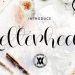 Letterhear Calligraphy Font