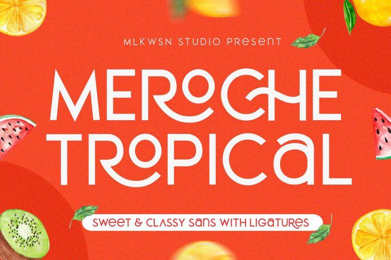 Meroche Sans Font Family