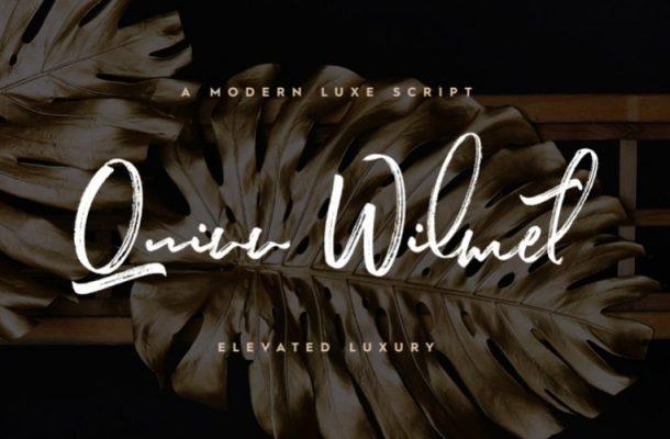 Quinn Wilmet Brush Font