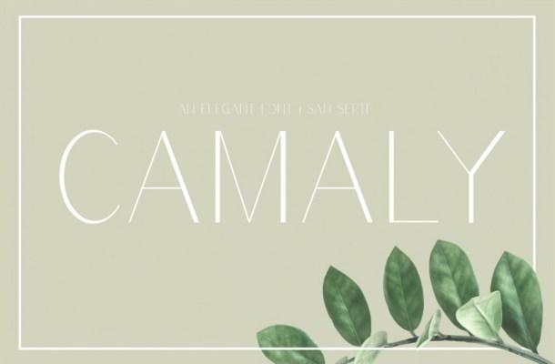 Camaly Sans Serif Font