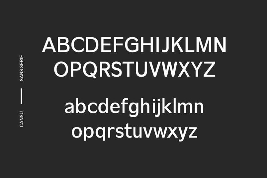 Cansu Sans Serif Font Family-3
