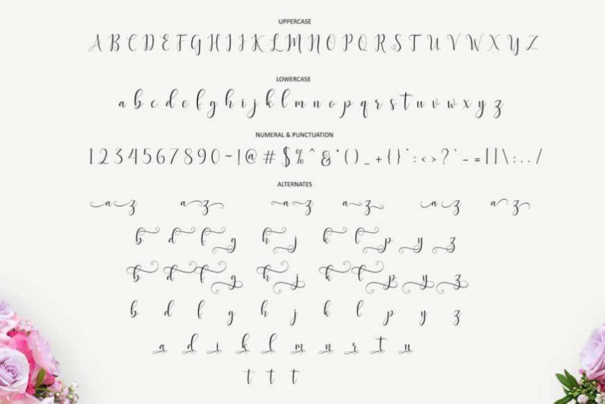 Delany Script Font-3
