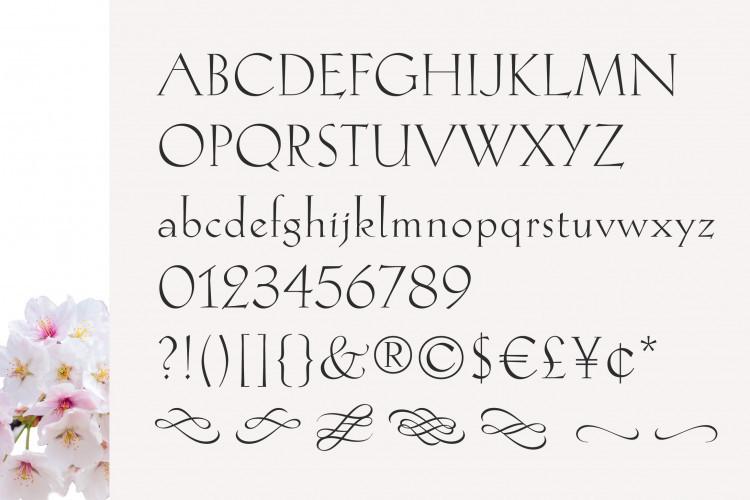 Hellen Serif Free Font-2