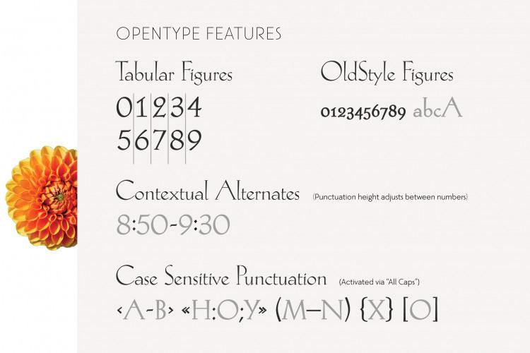 Hellen Serif Free Font-4