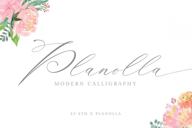 Planolla Calligraphy Font-1