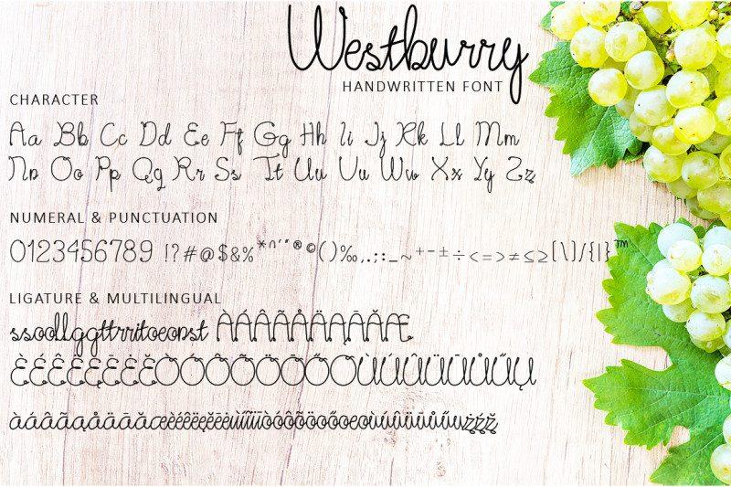 Westburry Handwritten Font-3