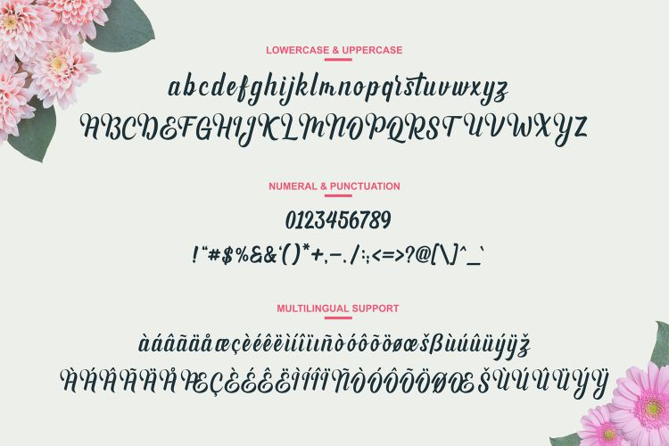 Andhyta Script Font-2