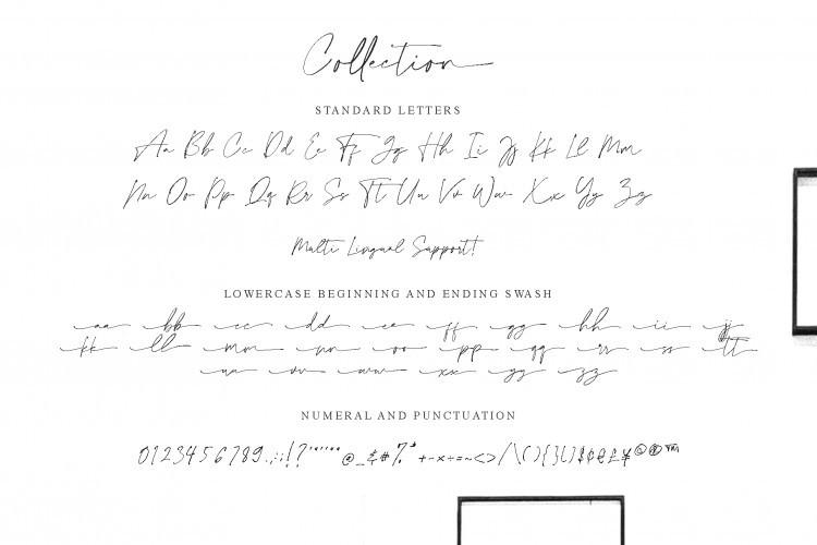 Collection Handwritten Font-4