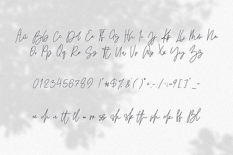 Kindel Script Font-3