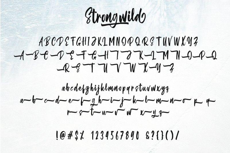 Strongwild Brush Font-4