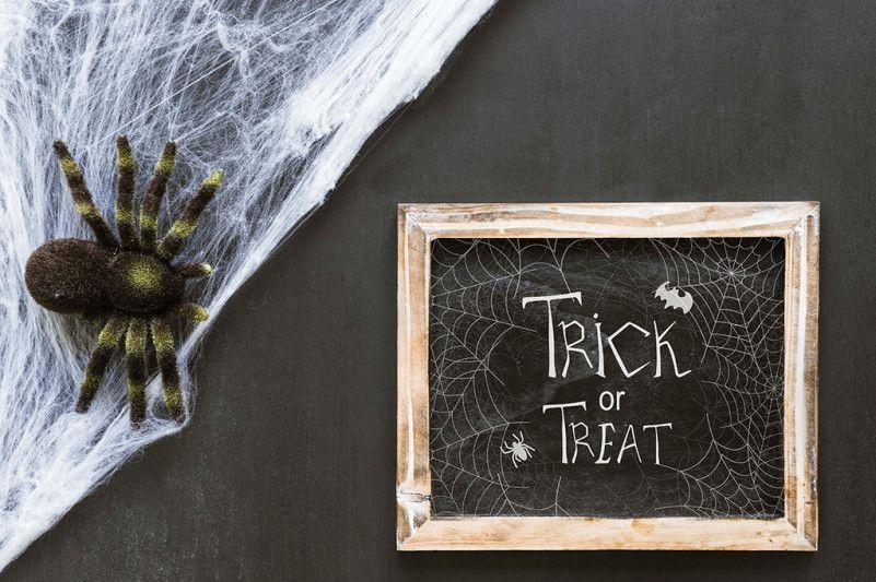 tarantula-font-2