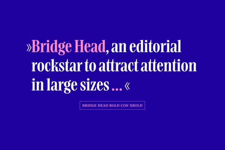 Bridge Head Font Family-2