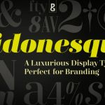 Didonesque Font Family (Free 1 Type)