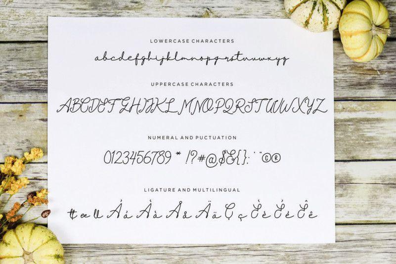 einstaint-font-3
