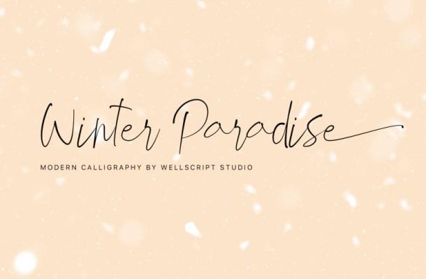 Winter Paradise Modern Script Font