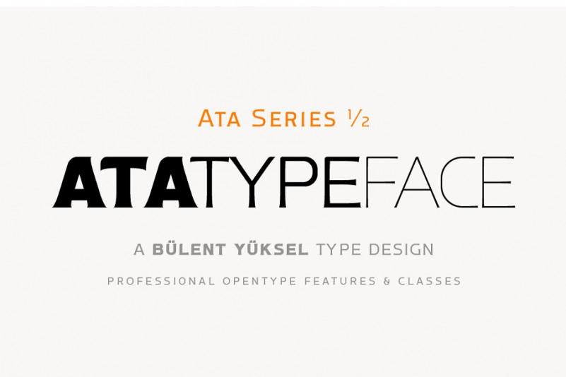ata-type-family-1