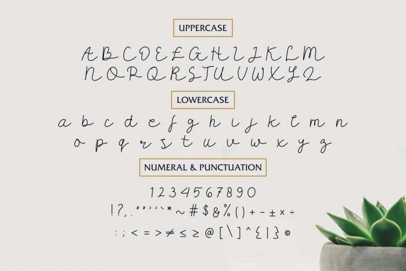 Carllis Script Font-3