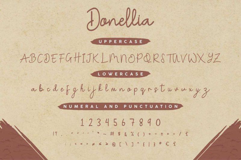 Donellia Handwriting Font-2