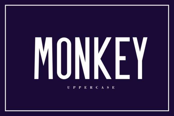 Monkey Sans Serif Font