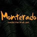 Monterado Handwritten Brush Font